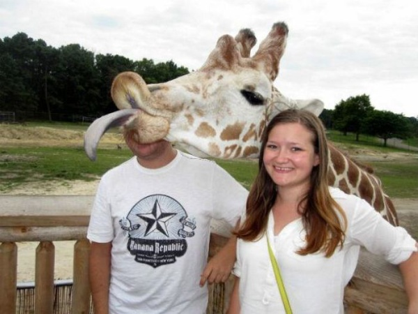 animal_photobombs_22