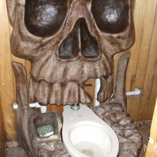 cool-toilets10