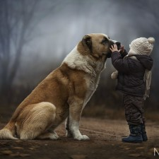 Dogs-and-Kids-27