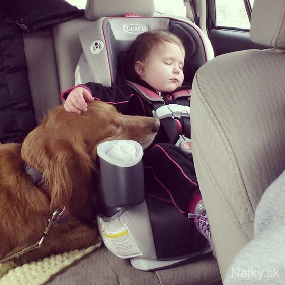 Dogs-and-Kids-29