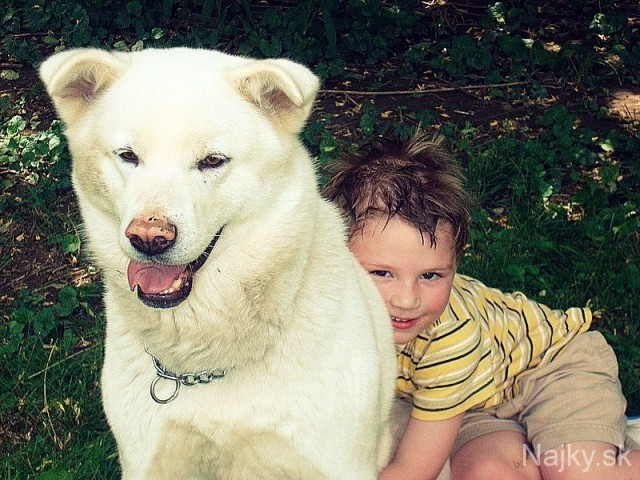 Dogs-and-Kids-30