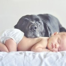 Dogs-and-Kids-32