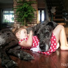 Dogs-and-Kids-7