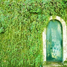amazing-old-vintage-doors-photography-23