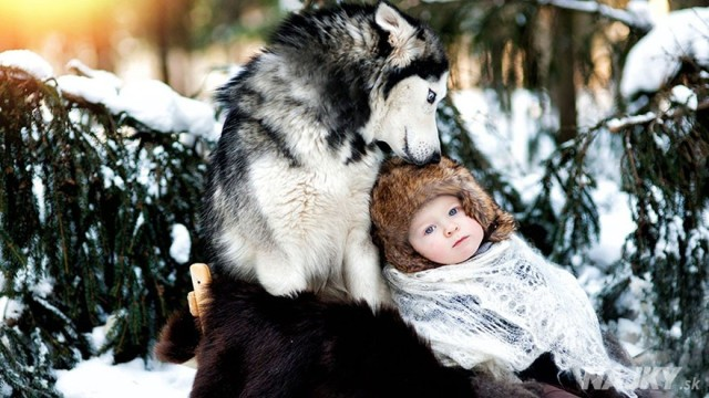 small-babies-children-big-dogs-15__880 - kópia