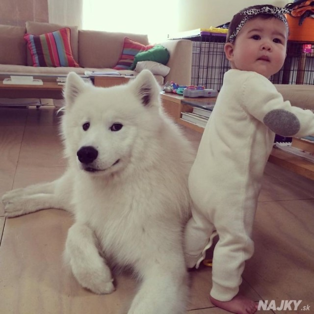 small-babies-children-big-dogs-27__880 - kópia