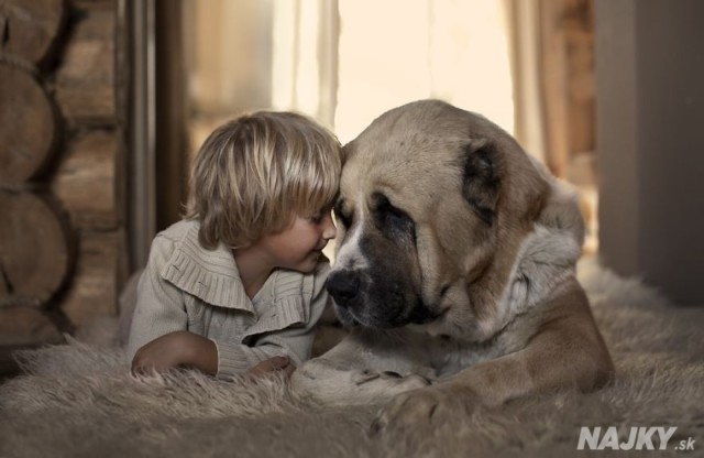 small-babies-children-big-dogs-37__880 - kópia