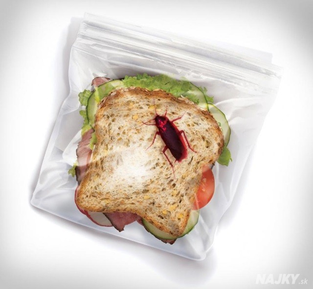 http://odditymall.com/sandwich-bags-with-bugs