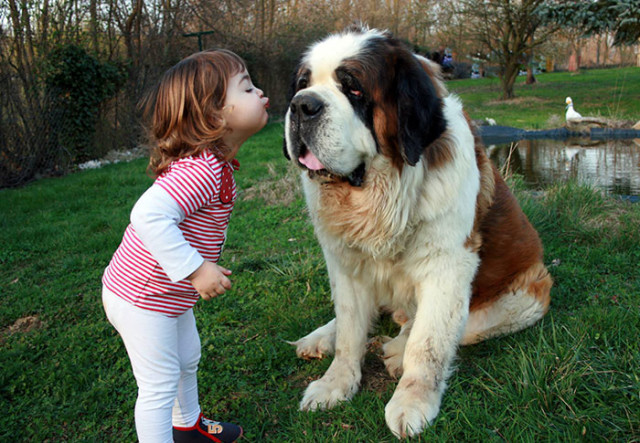 http://static.boredpanda.com/blog/wp-content/uploads/2015/04/kids-with-dogs-68__700.jpg