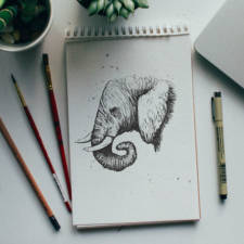 Designer-Draws-One-Animal-Per-Day-for-Newborn-Son5__605