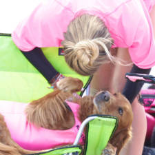 Two-Sisters-With-the-Same-Terminal-Illness-Catch-Waves-of-Support-With-my-Surfing-Dog10__880