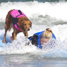 Two-Sisters-With-the-Same-Terminal-Illness-Catch-Waves-of-Support-With-my-Surfing-Dog14__880