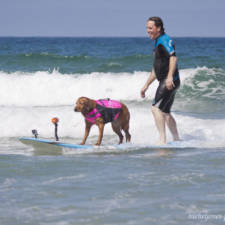 Two-Sisters-With-the-Same-Terminal-Illness-Catch-Waves-of-Support-With-my-Surfing-Dog8__880