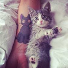 cat-tattoos162__605