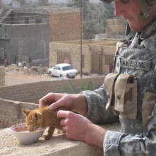 soldier-with-cat-15__605