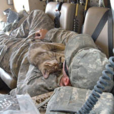 soldier-with-cat-9__605