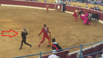 PETA-Supporter-Rushes-to-Assistance-of-Dying-Bull-in-Albacete-Bullring-590x328