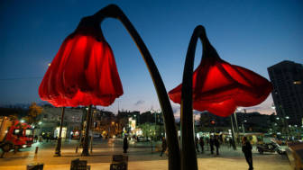 Inflating flowers warde hq architects jerusalem 101.jpg