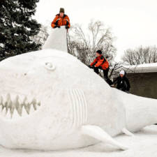 Giant animal snow sculptures bartz brothers 11.jpg