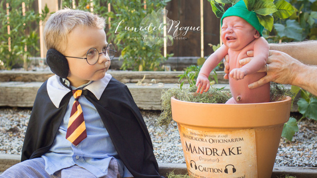 Harry potter themed newborn photography kelsey clouse 3.jpg