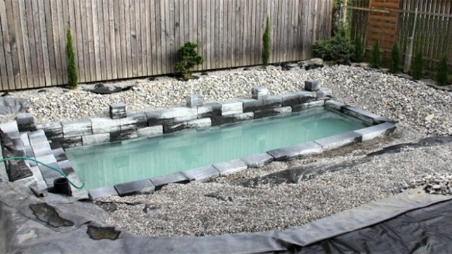 Natural swimming pool ds 1.png