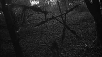 Blairwitch.png
