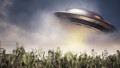 UFO hovering over a crop field