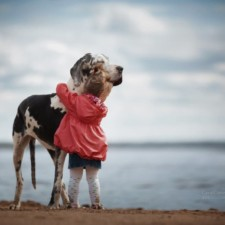 Little kids big dogs photography andy seliverstoff 14 584fa917f1bf0__880.jpg