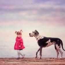 Little kids big dogs photography andy seliverstoff 15 584fa91953feb__880.jpg