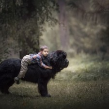 Little kids big dogs photography andy seliverstoff 16 584fa91bae708__880.jpg
