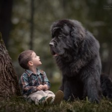 Little kids big dogs photography andy seliverstoff 18 584fa91fa298c__880.jpg