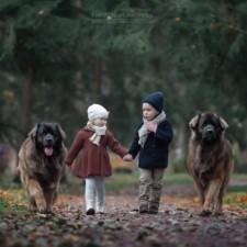 Little kids big dogs photography andy seliverstoff 23 584fa92aa10d2__880.jpg