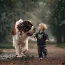 Little kids big dogs photography andy seliverstoff 5 584fa907a3cb6__880.jpg