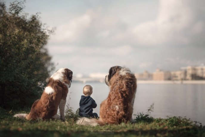 Little kids big dogs photography andy seliverstoff 58 584fa983309ed__880.jpg