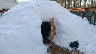 https://www.reddit.com/r/pics/comments/42rkiy/i_built_a_luxury_igloo_on_the_deck_behind_my_house/?&utm_source=LTcom