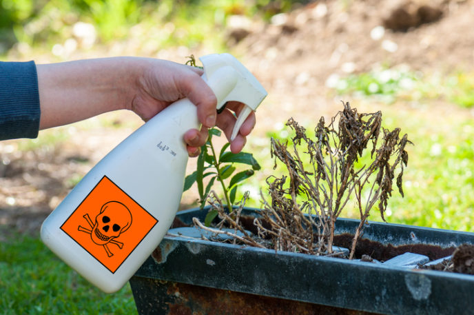 http://www.thinkstockphotos.com/search/# Insecticides/f=CPIHVX/p=3/s=DynamicRank