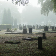 Graveyard with trees in mist in autumn. Geesteren. Achterhoek. Gelderland.