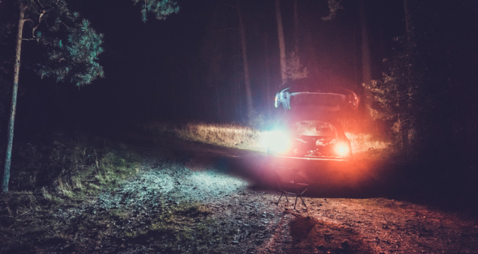 Tailights from car with open trunk in forest