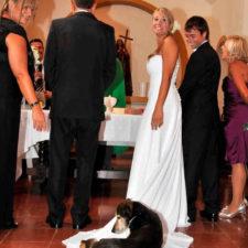 Funny wedding photobombs 146 5a005ae28171f__700.jpg