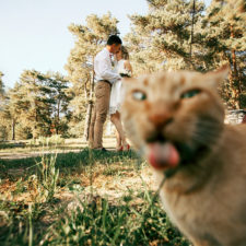 Funny wedding photobombs 154 5a017953cec4b__700.jpg