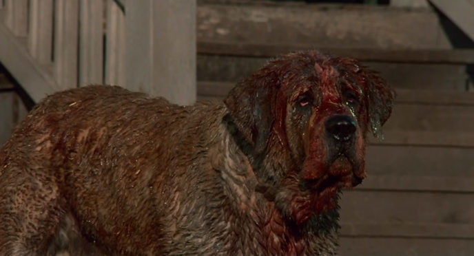 Http://cdn1us.denofgeek.com/sites/denofgeekus/files/bloody_cujo.jpg