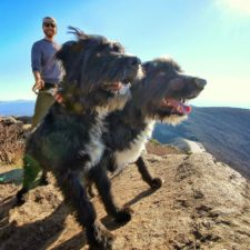 Man rescues two homeless dogs and decides to travel all over america with them 5a6e62b56a12b__700.jpg