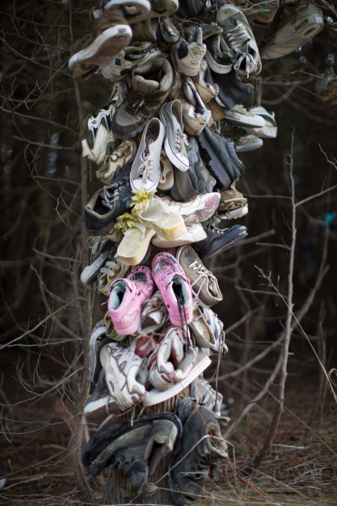 I found this mysterious forest full of shoes 5a91f3a9cd439__880.jpg