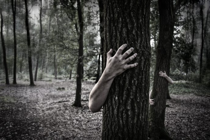 Http://maxpixel.freegreatpicture.com/Zombies Trunk Creepy Horror Scary Forest Hands 984032