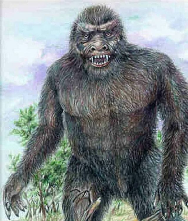 Http://non aliencreatures.wikia.com/wiki/Yowie