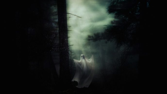 Http://maxpixel.freegreatpicture.com/Halloween Weird Spooky Forest Ghost Spirit Creepy 2874344