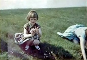 Http://www.theparanormalguide.com/blog/solway firth spaceman