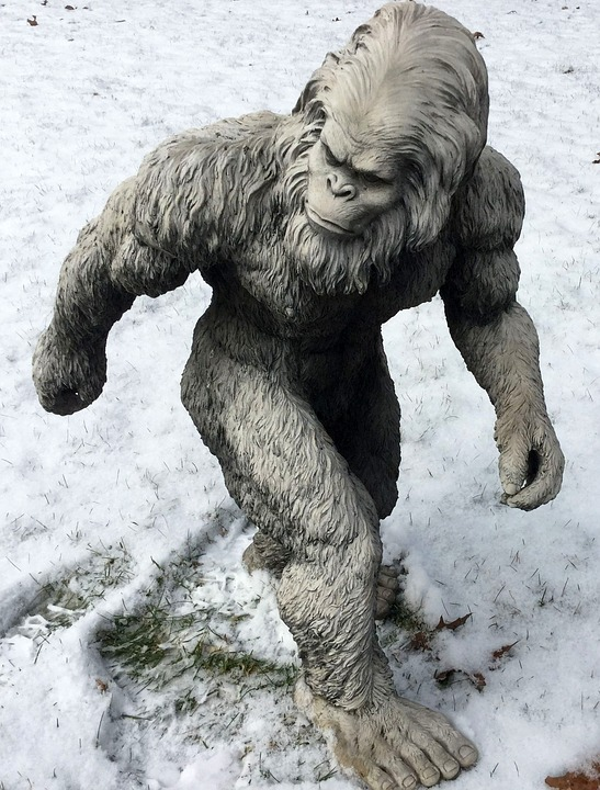 Https://pixabay.com/sk/bigfoot sasquatch yeti 1620140/