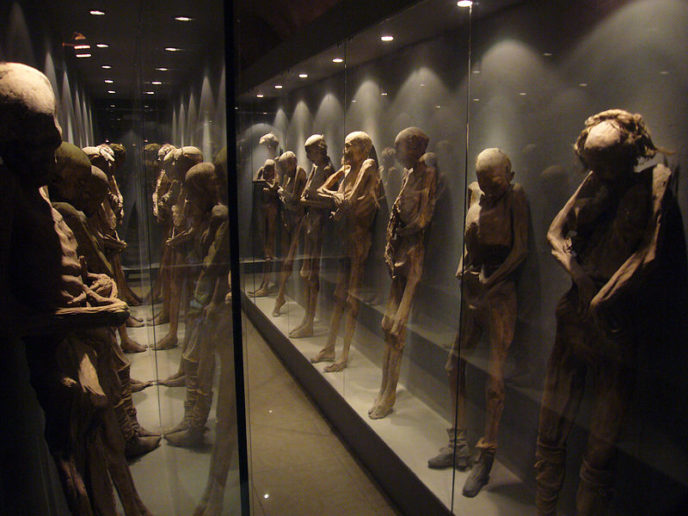 Https://commons.wikimedia.org/wiki/File:Mexican_Mummies.jpg
