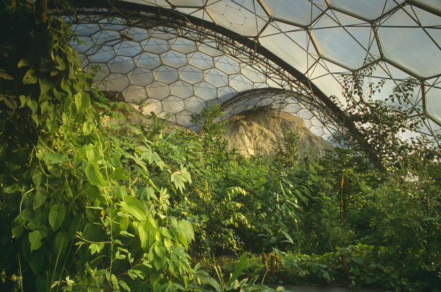 Sub Tropical Biosphere Dome